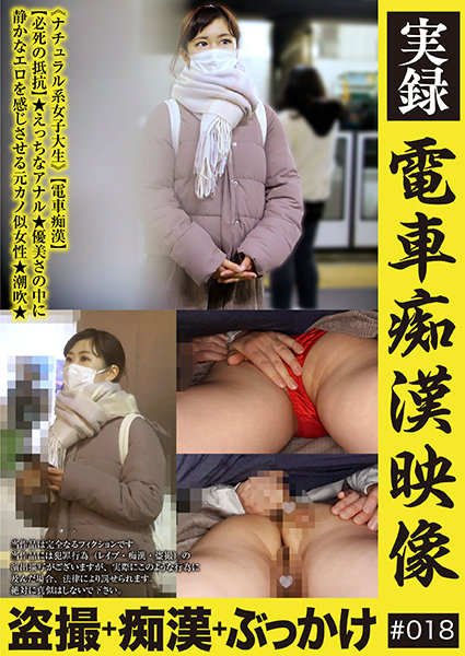 実録 電車痴漢映像 #018